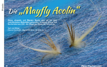 Maifliege, Fliegenbinden, Fliegenfischen, Mayfly Acolin