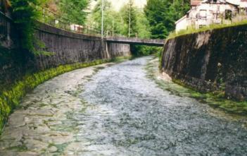 FIBER, Gewässerschutz, Renaturierung, Zürcher Gewässer