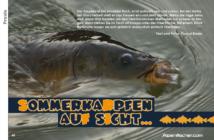 Fischen, angeln, Fischer, Angler, Kaprfen, Fang, Schwimmbrot
