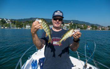 Egli, Barsch, fischen, Fischer, Angler, angeln, Sommerbarsch, Fang, Spinnfischen