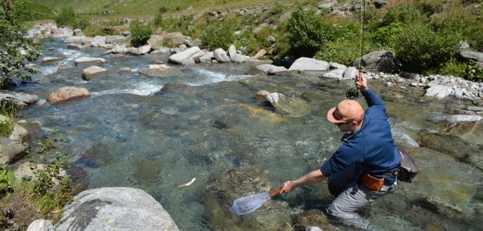 Fliegenfischen, Fischen, Angeln, Bergbach, Trockenfliege