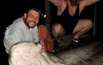 Rekord Wels, Wels, Murtensee, Fischer, Angler, Alpenfischer, Fangmeldung, Monster Wels, Petri-Heil, Riesenwels