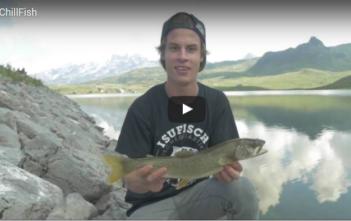 Fischen, angeln, Angler, fischer, Drau, Flussfischen, Petri