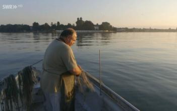 Berufsfischer Bodensee, Fangzahlen Bodensee, Rhein, Alpenfischer, fischen, angeln
