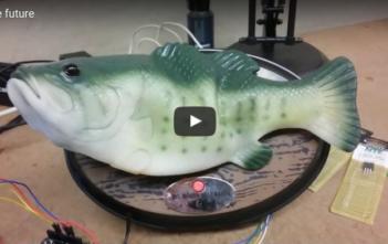 singende GFisch, Alexa, Alpenfischer, Gadget für Angler, fischen, angeln