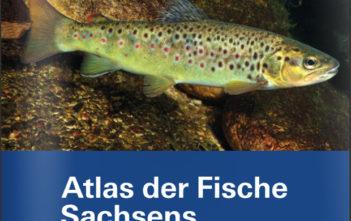 Nachschlagewerk Fische, Fisch Atlas, Rote Liste, Fischarten, Krebse, Alpenfischer, Alpen fischen, Angler, Fischer