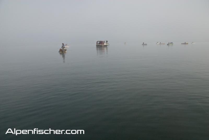 Raubfische im Winter fangen, Alenfischer, fischen, angeln, Tipp im kalten Wasser auf Raubfische, winterstimmung beim Winterangeln auf Barsch
