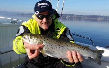 Seefo Saisoneröffnung, Alpenfischer, Fangmeldung, Zürichsee Seeforelle, Saisoneröffnung Seeforellen