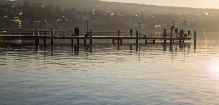 Gewässertipp Seeforellen, Zürichsee, Alpenfischer, Petri Heil