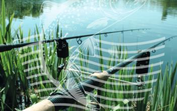 Wahlprüfsteine, DAFV, Alpenfischer, Arlinghaus, Selektive Entnahme, Fangfenster, Fischer, Angler
