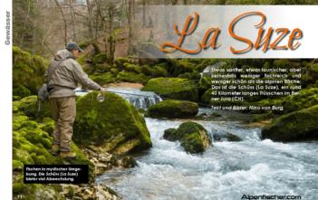 La Suze, Schüss, ALpener Bach, Forellen, Jura, FLiegenfischen Salmoniden, Alpenfischer