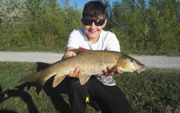 Jungfischer, Barbe, Limmat, Mozzi, Spinnfischen, Alpenfischer, anglen, fischen
