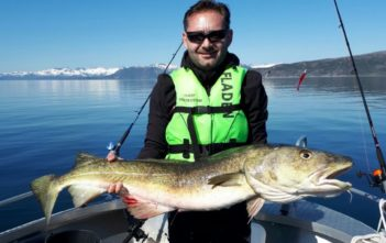 Fischen, Angeln, Meeresangeln, Fischer, angler, Alpenfischer, Dorsch, Ferienfang, Fangbild, Fangmeldung