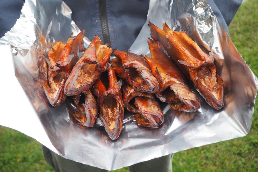 Fisch räuchern, Räucherofen, Räuchermehl, Regenbogenforellen räuchern, Äschen im Rauch, Alpenfischer, angeln, fischen