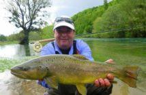 Bachforelle, Alpenfischer, Fliegenfischen