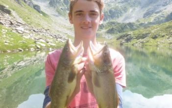 Bergsee fischen, Elritze, Köderfisch am System, Bachforelle