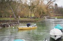 Forellenfischen am Rhein, Saisonstart, Diessenhofen, Spinnfischen Forellen, Alpenfischer