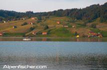 Fischen, Alpenfischer, Sihlsee