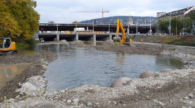 Alpenfischer, Lachse, Lachsaufstieg, WWF LAchse in der Schweiz