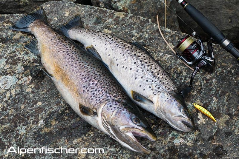 Fischen, Alpenfischer, Seeforelle, Graubünden