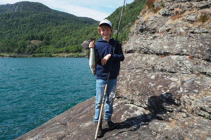 Pollack, Meeresfischen Norwegen, Angeln in Südnorwegen