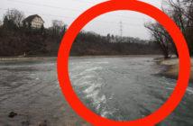 KKW, AKW Beznau, Warmwassereinleitung, Fischsterben, Hitzetod