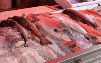 Omega-3-Fettsäure, Fische, ALpenfischer, Nahrungsmittel Fisch, Angler