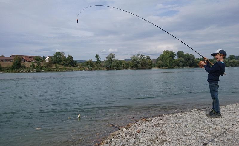 Aletfischen, Döbelangeln, Rhein-Döbel, Alpenfischer, fischen, angeln