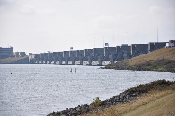 Damm Haringsvilet, Lachswanderung, Rheinlachs, salmoncomeback, Rhein Wanderung Lachse
