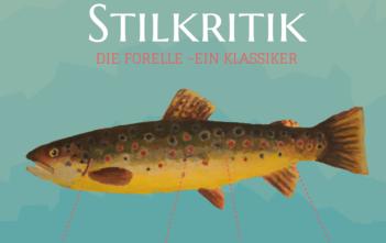 alpenfischer.com, Stilkritik Forelle, Forelle, Salmonide