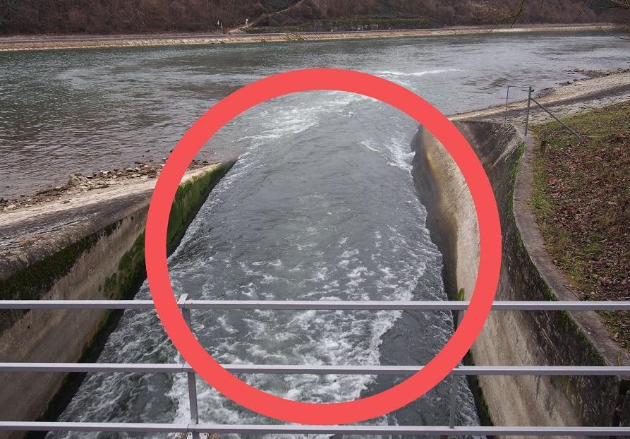 Hitzesommer, Verfügung AKW Beznau, Warmwassereinleitung KKW, Beznau, alpenfischer.com, SFV Zwischenverfügung